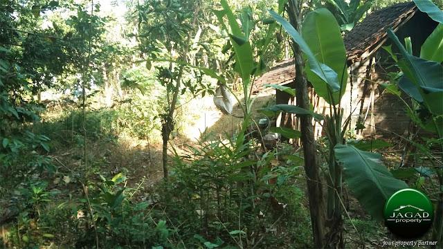 Tanah dekat Polsek Girimulyo, Kulon Progo