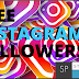 How To Get Free Instagram Followers ! Free Instagram Followers ! Story Pulse