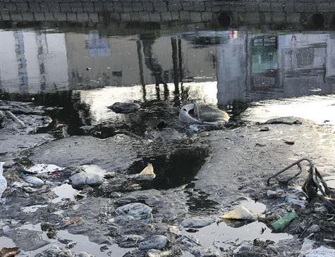 No Brasil, 85 municípios cumprem todos requisitos de saneamento básico