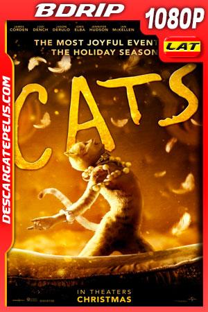 Cats (2019) 1080p BDrip Latino – Ingles