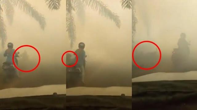 Waduh, Kabut Asap Tebal di Provinsi Ibu Kota Baru, Pemotor Tabrak Pohon