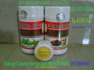 obat-herpes-ampuh-de-nature-300x225.jpg