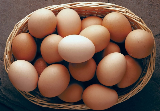 telur, 7 makanan sehat yang berbahaya
