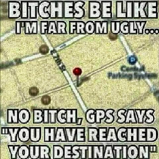 "bitches be like I'm far from ugly... no bitch, gps says ""you have reached your destination"""