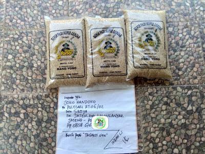 Benih pesanan JOKO HANDOKO Karanganyar, Jateng.   (Sebelum Packing)