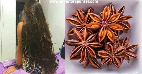 shampoo de anis estrelado para estimular o crescimento do cabelo