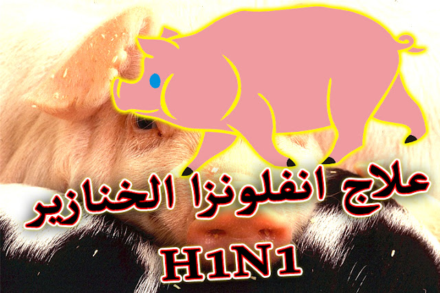 اعراض انفلونزا الخنزير و5 نصائح لعلاجها بسرعة 1