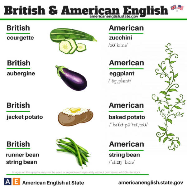 A Fun and Informative Infographic That Shows the Differences between British vs. American English (24 pics)