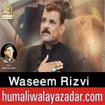 https://aliwalayazadar.blogspot.com/2020/09/waseem-rizvi-nohay-2021.html