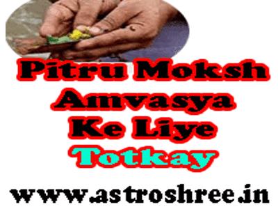 pitru moksh amavasya totkay by astrologer