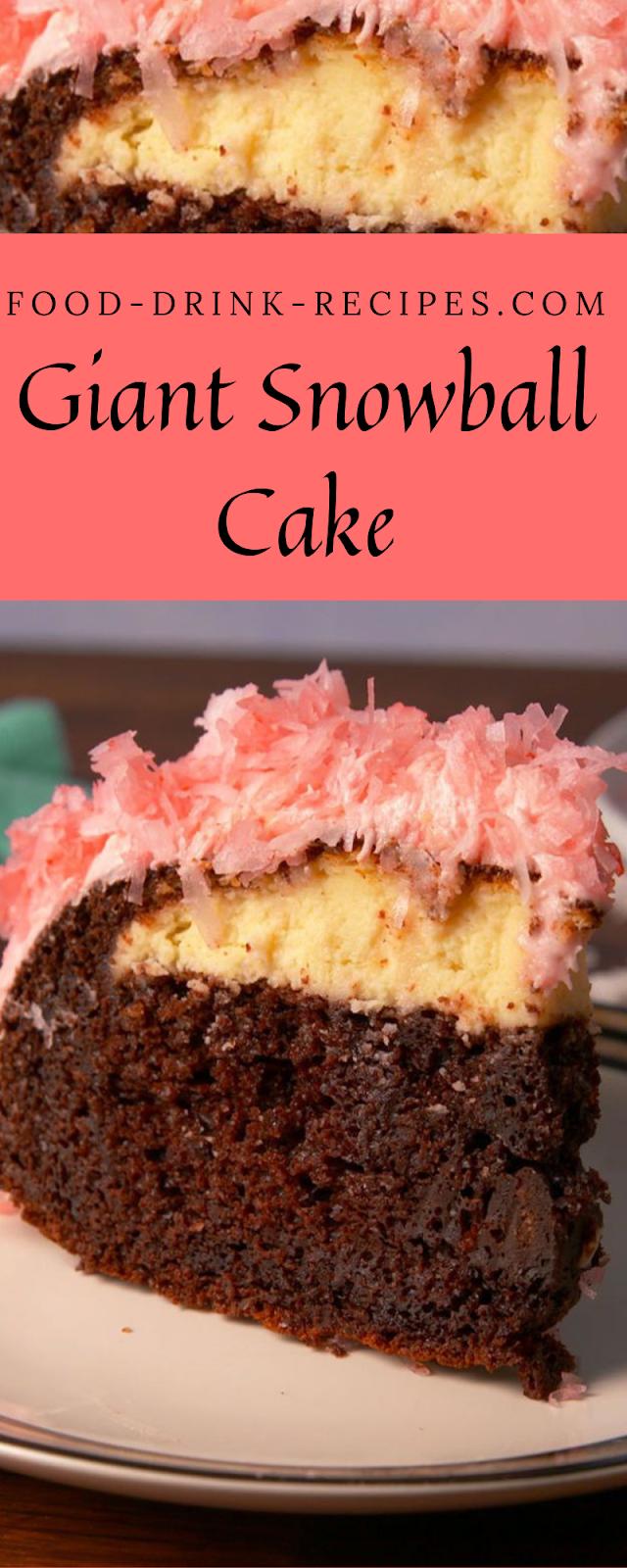 Giant Snowball Cake - food-drink-recipes.com