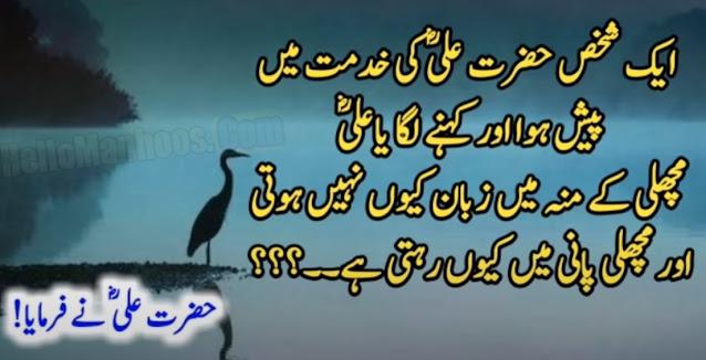 Hazrat Ali (R.A) Heart Touching Quotes In Urdu