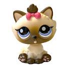 Littlest Pet Shop Pet Pairs Himalayan Cat (#2545) Pet