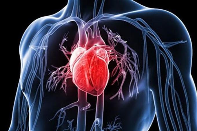 Sayangi Jantung Kita, Ubah Pola Hidup dengan Konsumsi Makanan Sehat