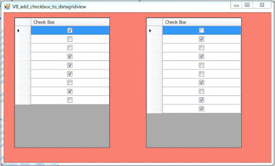 VB DataGridView Check Box Column