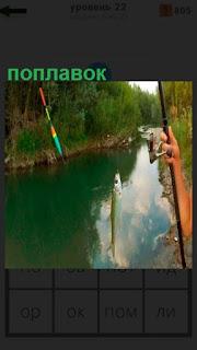 1100 слов на реке удочкой с поплавком ловят рыбу 22 уровень