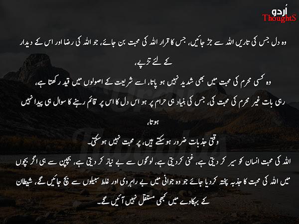 Beautiful Urdu Quote - Wo Dil Jis ki