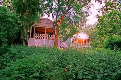 Jungle bells camp, Araku