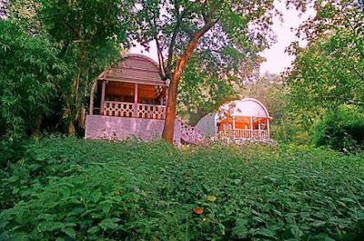 Jungle bells camp, Araku