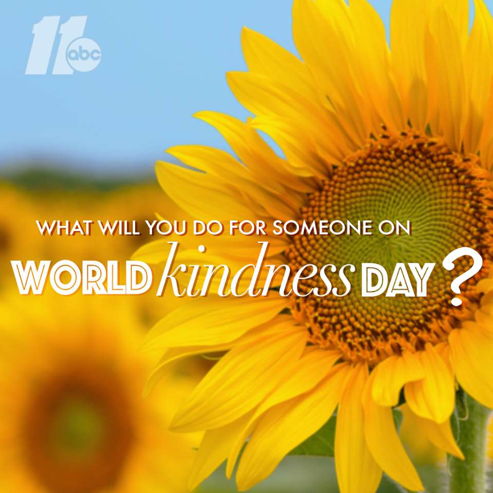 World Kindness Day Wishes Lovely Pics