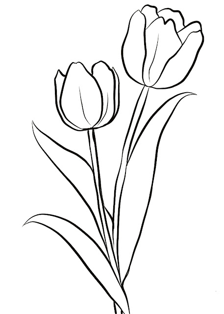Mewarnai Gambar Bunga Tulips