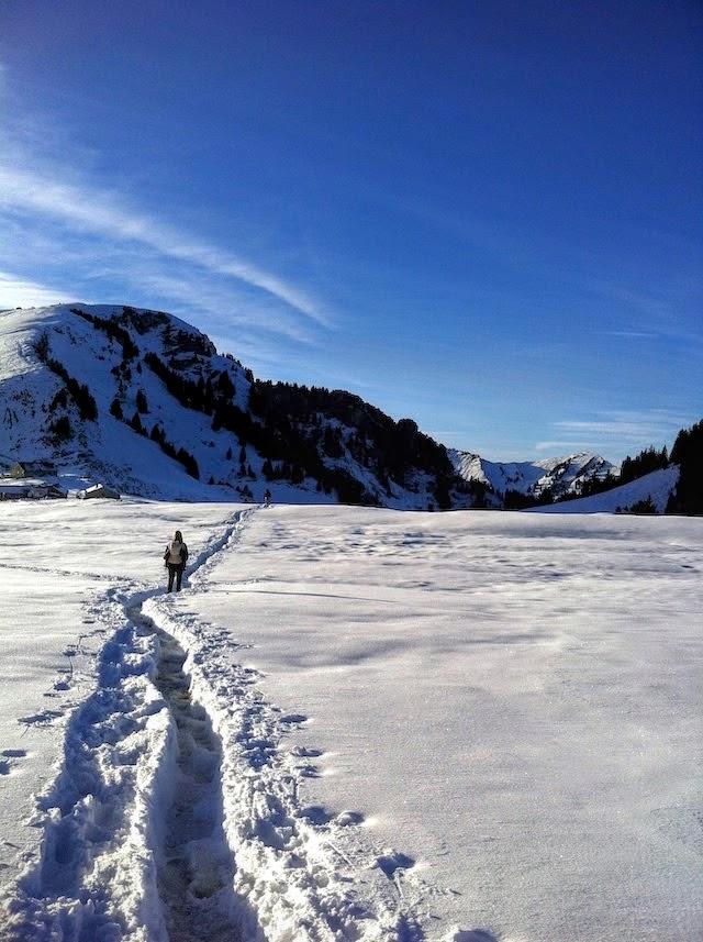 Hiking mountains around Zurich