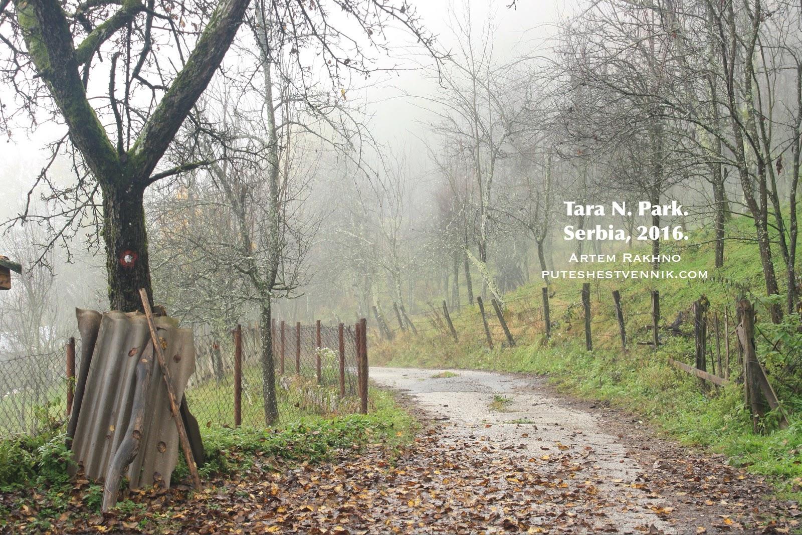 Осенний сад в Сербии