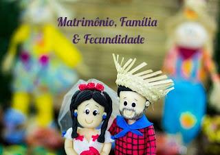 Curso Matrimônio, Família e Fecundidade