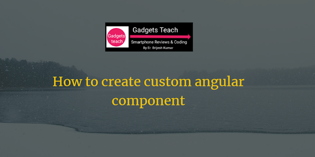 How to create custom angular component