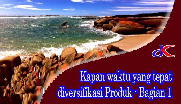 Kapan waktu yang tepat diversifikasi produk || Bagian 1