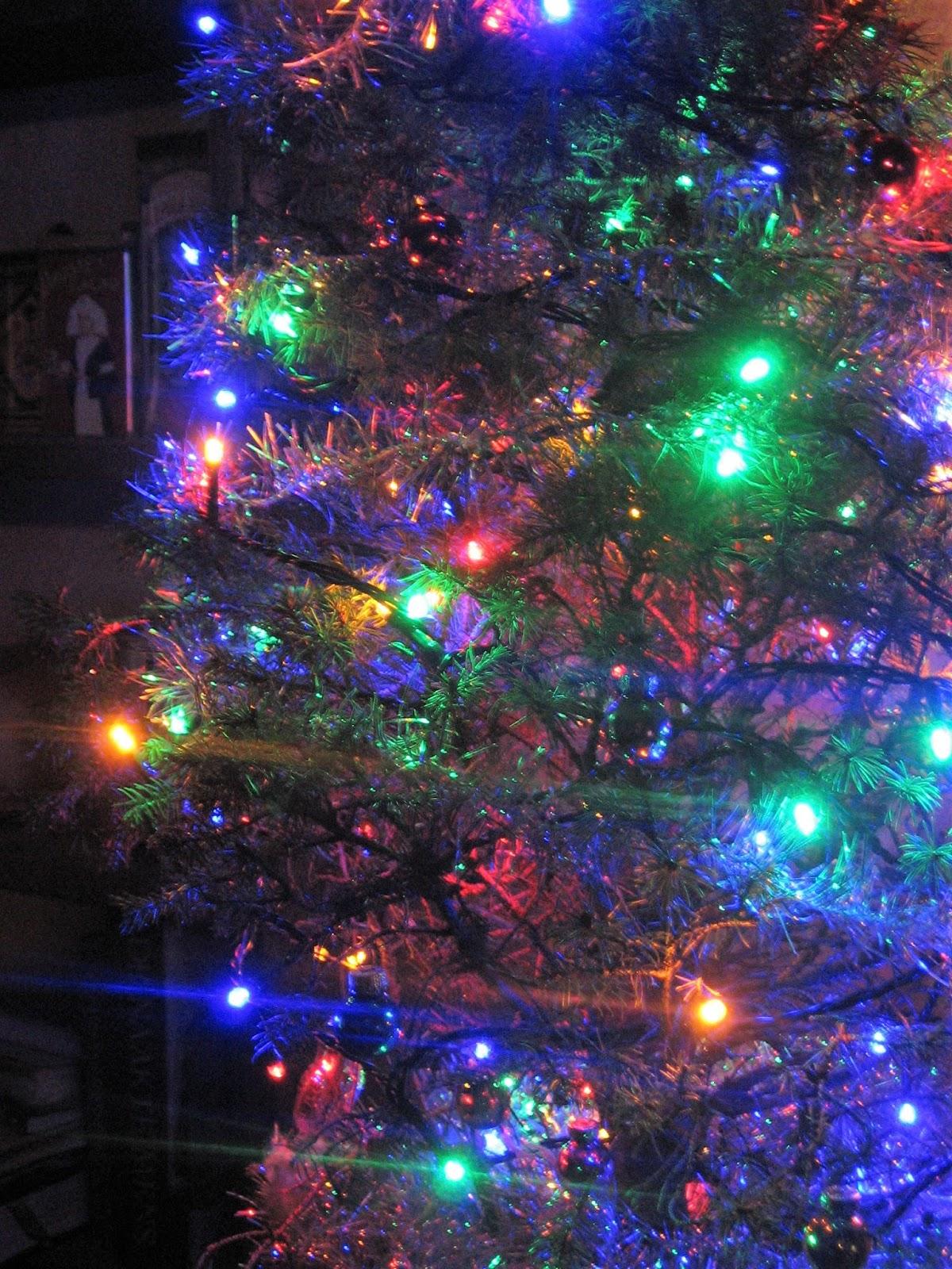 Le Pre Bonnet De Kerstboom