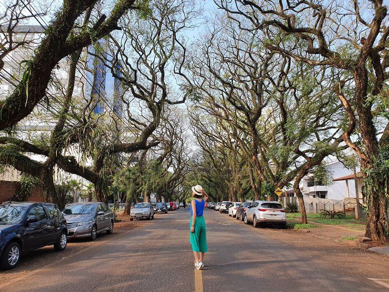 Avenida Pedro Basso Foz do Iguassu