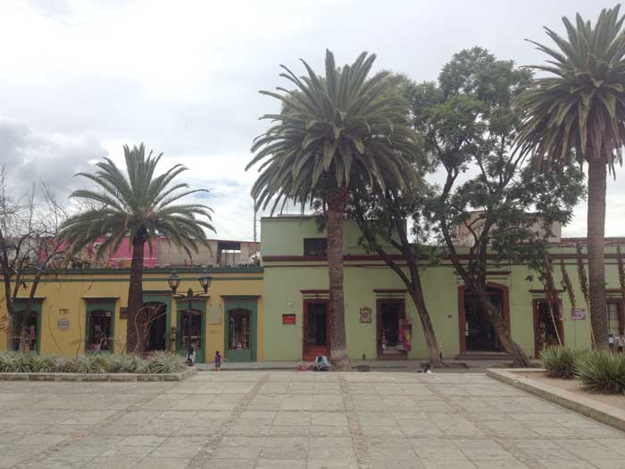 Guía_México_The_Sad_Eyed_Girl_Oaxaca