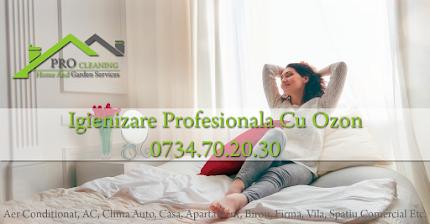Igienizare Profesionala Ozon Timisoara