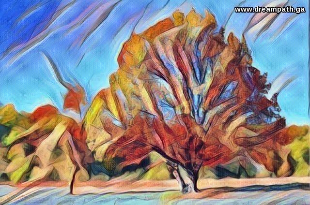 Tree and serene sky