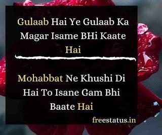 Gulaab-Hai-Ye-Gulaab Ka-Rose-Day-Shayari