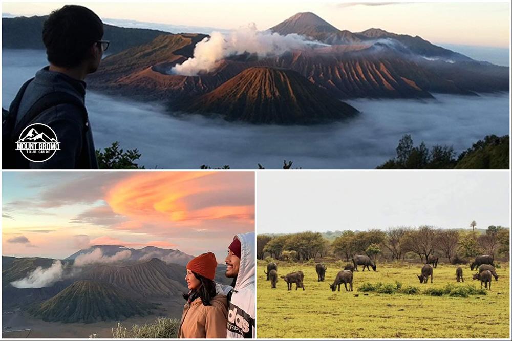 Mount Bromo, Baluran Safari tour package 3 days