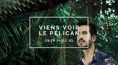 Anoraak remixe Pélican d'Equateur