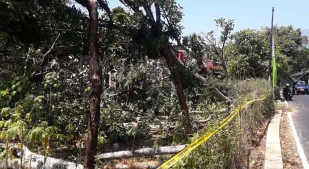 Selidiki Kasus Mati Listrik Massal, Polri Sudah Periksa 15 Orang Saksi