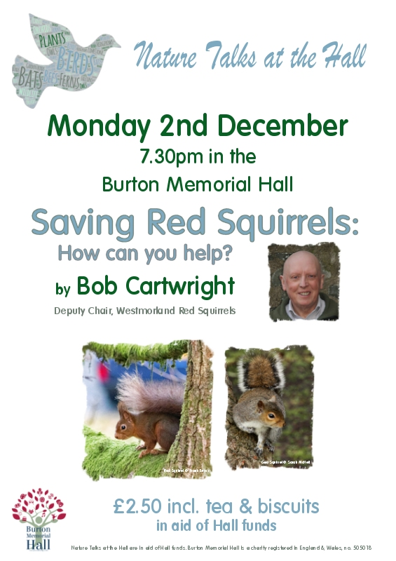 Saving Red Squirrels