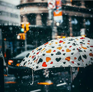 صورة مظلة/شمسية تتساقط عليها الامطار فى فصل الشتاء