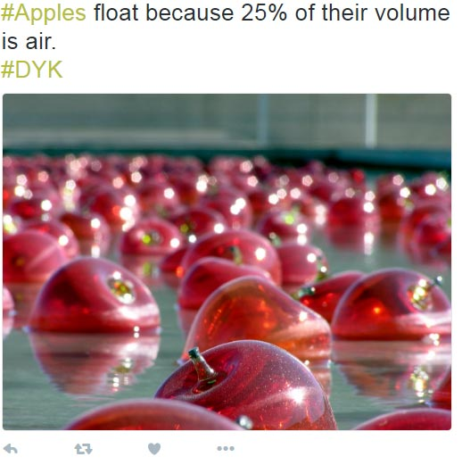 An amazing fact about Apple...