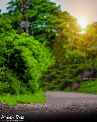 Green Nature CB Background Free Stock Photo