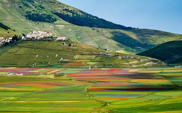 Η ιταλική κοιλάδα που κάθε χρόνο μετατρέπεται σε μια πολύχρωμη «θάλασσα» από αγριολούλουδα
