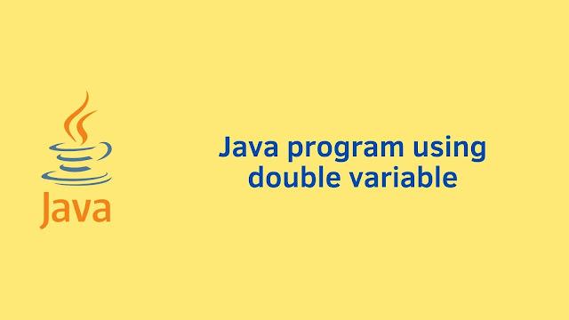 Java program using double variable
