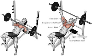 Top 5 Exercises To Build Chest, Incline Barbell Press