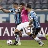 www.seuguara.com.br/Grêmio/Copa Libertadores 2021/