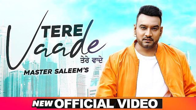 Tere Vaade lyrics- Master Saleem