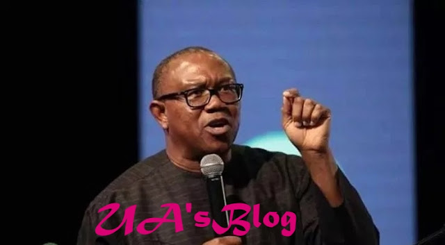 Some Individuals Are Behind The Call For My Removal – Peter Obi