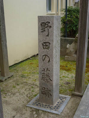 春日神社野田の藤跡